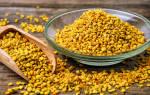Чем полезна пчелиная пыльца и как ее принимать
