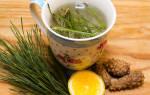 Чай из сосновых иголок польза и вред