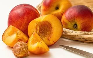 Что за фрукт нектарин и его полезные свойства?