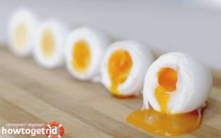 Яйцо в всмятку польза и вред